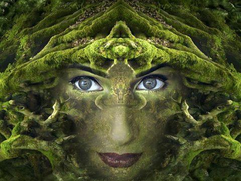 La divinidad en la naturaleza
